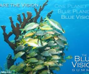 blue-vision-summit