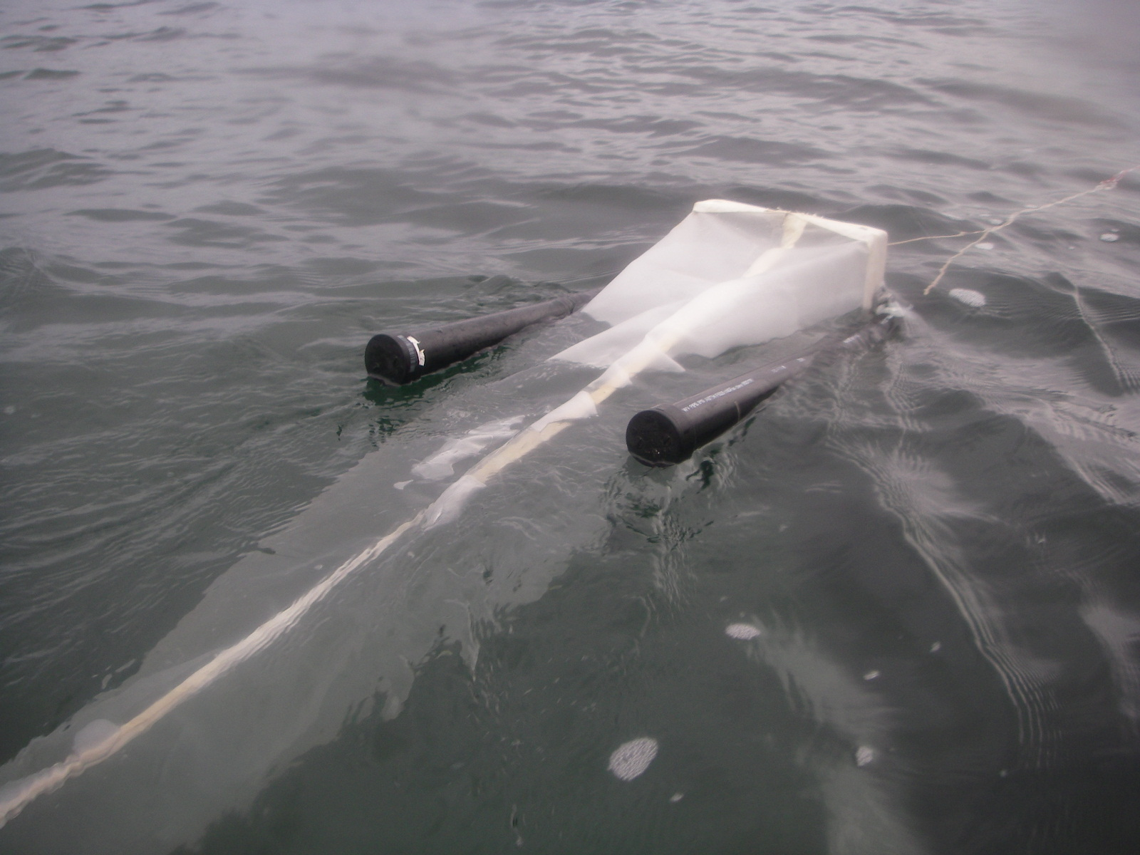 5 Gyres trawl