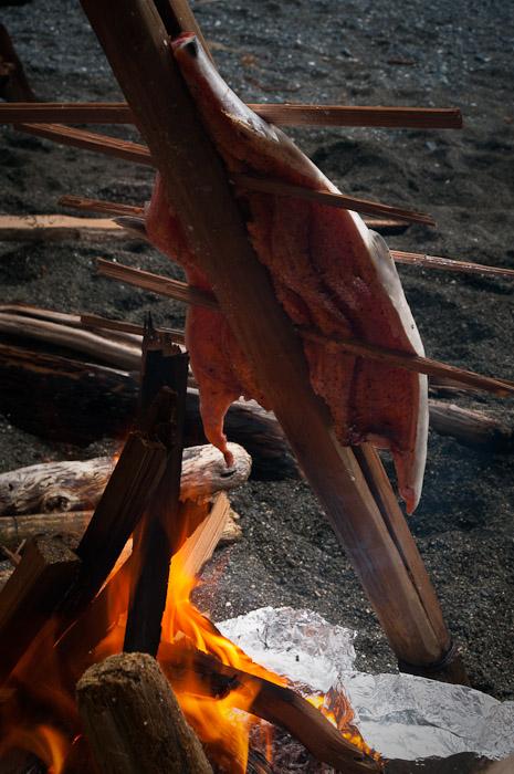 Salmon Stick