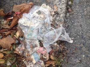 With most of the papers inside decomposing in a wet, sloppy mess, the remains of the plastic bag will soon be carried elsewhere by the wind or the water. Not sure where, but it won't be anywhere good.